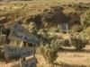 FlindersRanges011116-281